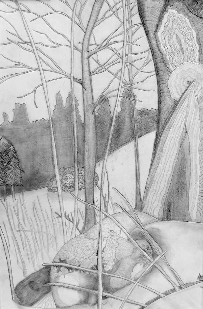 """Final Days of Hibernation"", Nick Milburn, 2008, Graphite on Foam Board, 18"" x 24"""